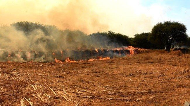 """La Pampa controló los incendios forestales y el panorama es """"optimista"""""""