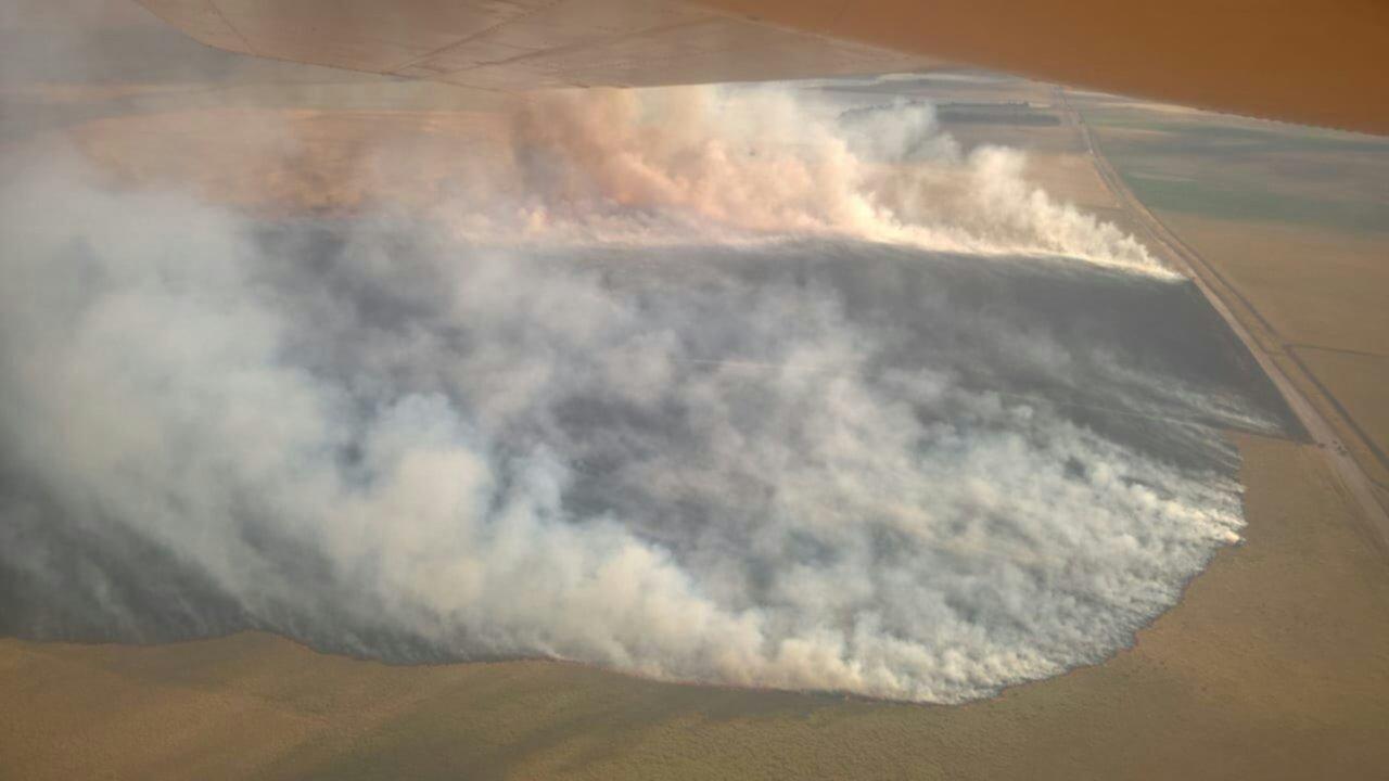 Se quemaron 200 hectáreas de pastizales entre las lagunas de Saavedra y Pigüé