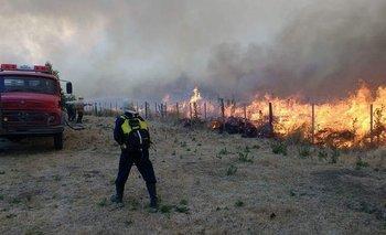 Incendios en las sierras: el INTA determinó el sorprendente número final de hectáreas afectadas