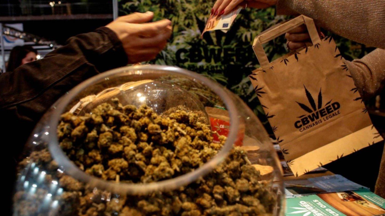 los-alimentos-con-cannabis-llegan-a-las-mesas-de-los-italianos