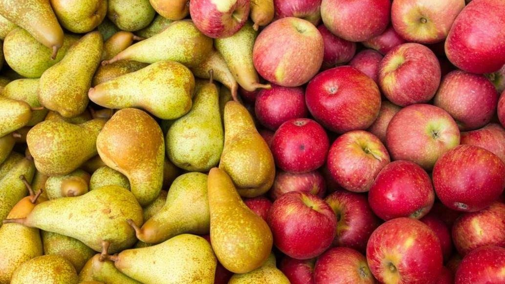 Por una plaga, Brasil cierra el ingreso de peras y manzanas argentinas