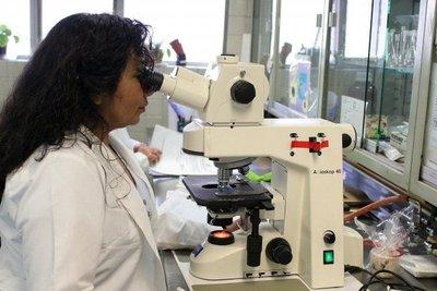 El Gobierno dispuso aumento del 9,38 % para las jubilaciones de los científicos