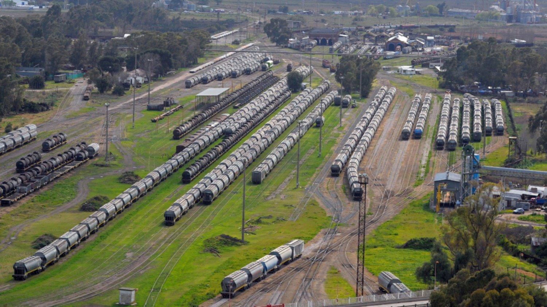 Correrán tres trenes diarios entre Bahía Blanca y Vaca Muerta